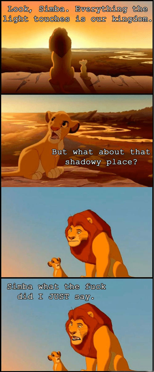 Shadowy: Look Simbao Bverything the  light touches is our kingdom.  But what about that  shadowy place?   Simba what the fuck  did I JUST say
