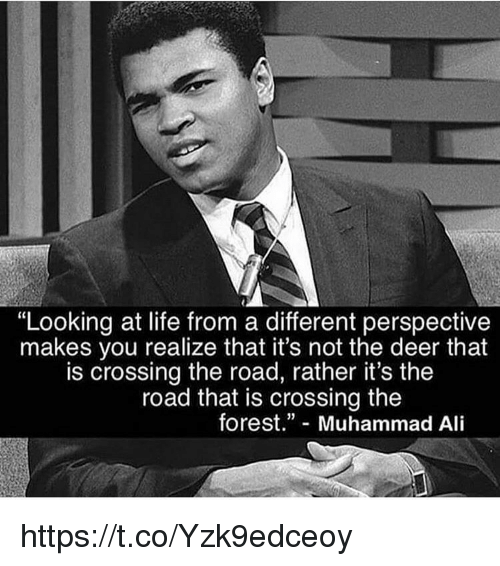"""Ali, Deer, and Life: """"Looking at life from a different perspective  makes you realize that it's not the deer that  is crossing the road, rather it's the  road that is crossing the  forest."""" Muhammad Ali https://t.co/Yzk9edceoy"""