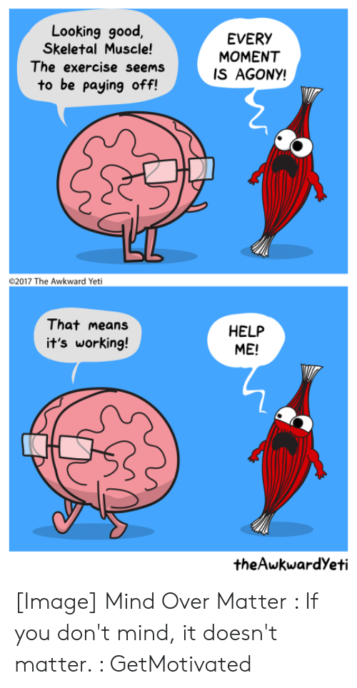 its working: Looking good  Skeletal Muscle!  The exercise seems  EVERY  MOMENT  IS AGONY!  to be paying off!  2017 The Awkward Yeti  That means  HELP  ME!  it's working!  theAwkwardYeti [Image] Mind Over Matter : If you don't mind, it doesn't matter. : GetMotivated