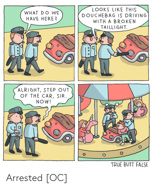 sir: LOOKS LIKE THIS  DOUCHEBAG IS DRIVING  WITH A BROKEN  TAILLIGHT.  WHAT DO WE  HAVE HERE?  ALRIGHT, STEP OUT  OF THE CAR, SIR.  NOW!  TRUE BUTT FALSE  o 00 Arrested [OC]
