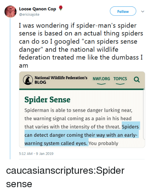 "I Googled: Loose Qanon Cop  @ericisajoke  Follow  I was wwondering if spider man's spider  sense is based on an actual thing spiders  can do so I googled ""can spiders sense  danger"" and the national wildlife  federation treated me like the dumbass I  am  National Wildlife Federation's NWF.ORG  Q  TOPICS  BLOG  Spider Sense  Spiderman is able to sense danger lurking near,  the warning signal coming as a pain in his head  that varies with the intensity of the threat. Spiders  can detect danger coming their way with an early-  warning system called eyes. You probably  5:12 AM-9 Jan 2019 caucasianscriptures:Spider sense"