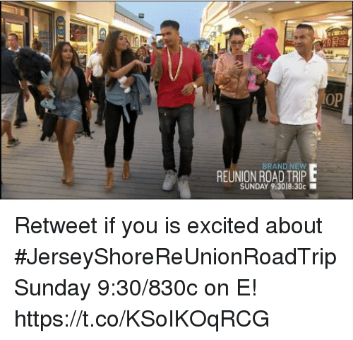Memes, Sunday, and Brand New: LOp  REUNION ROAD TRIPE  BRAND NEW  SUNDAY 9:3018:30c Retweet if you is excited about #JerseyShoreReUnionRoadTrip Sunday 9:30/830c on E! https://t.co/KSoIKOqRCG
