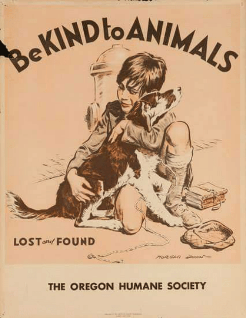 Memes, Humane Society, and Oregon: LOS Tond FOUND  THE OREGON HUMANE SOCIETY
