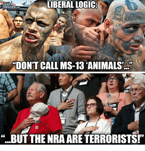 """Animals, Logic, and Memes: LOUDER  CROWDER.coM  IBERAL LOGIC  TON'T CALL MS-13 ANIMALS'  """"BUT THE NRA ARE TERRORISTS!"""""""
