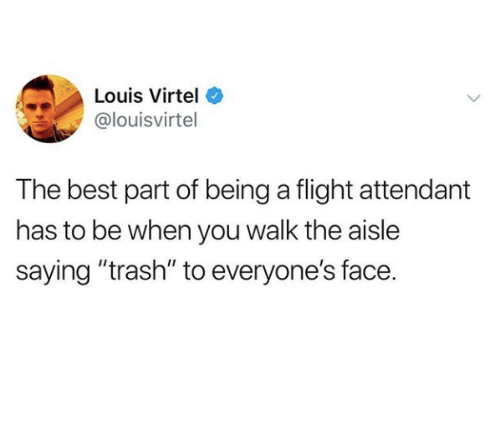 """Trash, Best, and Flight: Louis Virtel  @louisvirtel  The best part of being a flight attendant  has to be when you walk the aisle  saying """"trash"""" to everyone's face."""