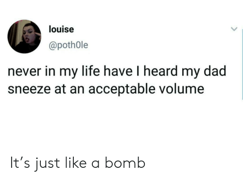 Dad, Life, and Never: louise  @poth0le  never in my life have I heard my dad  sneeze at an acceptable volume It's just like a bomb