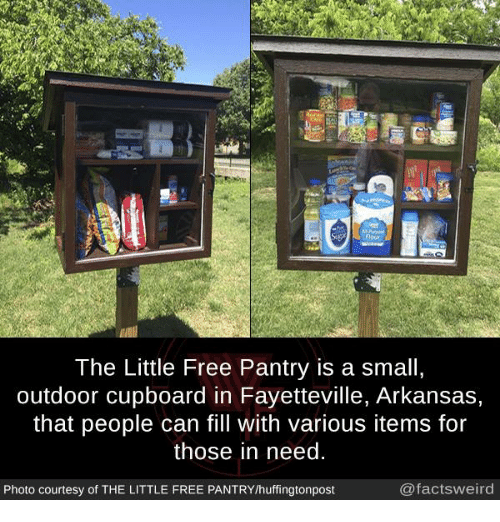 Memes, Arkansas, and Free: lour  The Little Free Pantry is a small,  outdoor cupboard in Fayetteville, Arkansas,  that people can fill with various items for  those in need  Photo courtesy of THE LITTLE FREE PANTRY/huffingtonpost  @factsweird