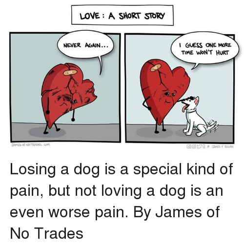 Dank, Love, and Guess: LOVE: A SHORT STORY  NEVER AGAIN.  I GUESS ONE MORE  TIME WoN'T HURT  人.  AMES OF NO TRADES.COM Losing a dog is a special kind of pain, but not loving a dog is an even worse pain.  By James of No Trades