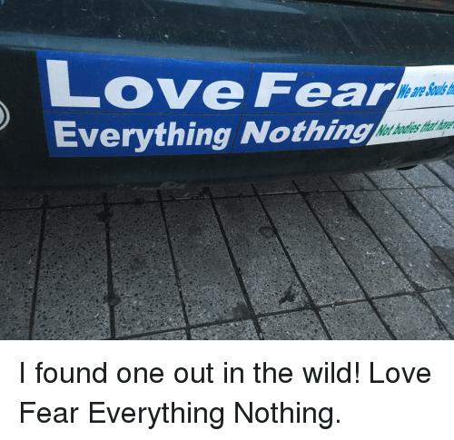 Love, Wild, and Fear: Love Fear  Everything Nothing  We avre Souls t