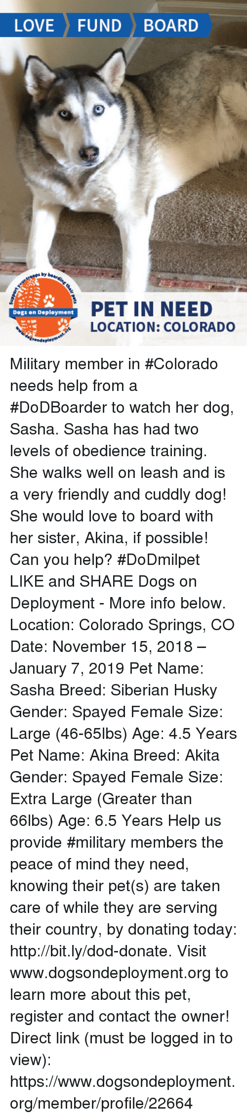 Dogs, Love, and Memes: LOVE FUND BOARD  s by  PET IN NEED  LOCATION: COLORADO  Dogs on Deployment Military member in #Colorado needs help from a #DoDBoarder to watch her dog, Sasha. Sasha has had two levels of obedience training. She walks well on leash and is a very friendly and cuddly dog! She would love to board with her sister, Akina, if possible! Can you help? #DoDmilpet   LIKE and SHARE Dogs on Deployment - More info below.   Location: Colorado Springs, CO Date: November 15, 2018 – January 7, 2019  Pet Name: Sasha Breed: Siberian Husky Gender: Spayed Female Size: Large (46-65lbs)  Age: 4.5 Years  Pet Name: Akina  Breed: Akita Gender: Spayed Female Size: Extra Large (Greater than 66lbs) Age: 6.5 Years  Help us provide #military members the peace of mind they need, knowing their pet(s) are taken care of while they are serving their country, by donating today: http://bit.ly/dod-donate.   Visit www.dogsondeployment.org to learn more about this pet, register and contact the owner!  Direct link (must be logged in to view): https://www.dogsondeployment.org/member/profile/22664