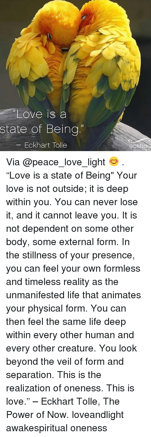 "Life, Love, and Memes: ""Love is a  state of Being  -Eckhart Tolle  fr  eckhan Via @peace_love_light 😊 . ""Love is a state of Being"" Your love is not outside; it is deep within you. You can never lose it, and it cannot leave you. It is not dependent on some other body, some external form. In the stillness of your presence, you can feel your own formless and timeless reality as the unmanifested life that animates your physical form. You can then feel the same life deep within every other human and every other creature. You look beyond the veil of form and separation. This is the realization of oneness. This is love."" – Eckhart Tolle, The Power of Now. loveandlight awakespiritual oneness"