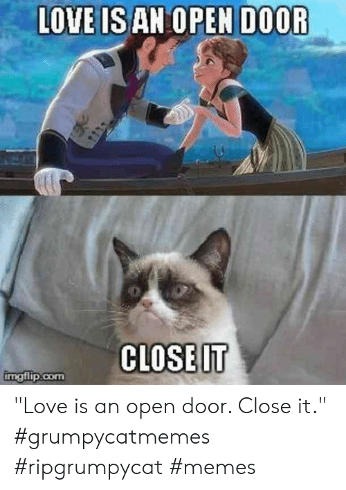 "Love, Memes, and Com: LOVE IS AN OPEN DOOR  CLOSE IT  imgflip.com ""Love is an open door. Close it.""  #grumpycatmemes #ripgrumpycat #memes"