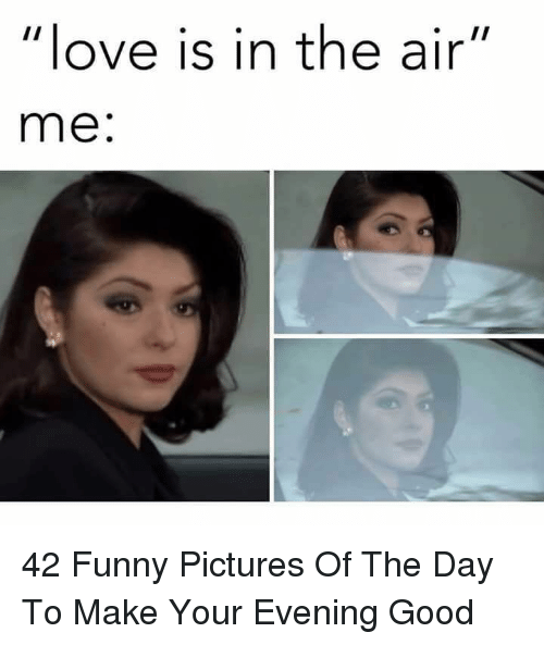 "Funny Pictures Of: love is in the air""  me: 42 Funny Pictures Of The Day To Make Your Evening Good"