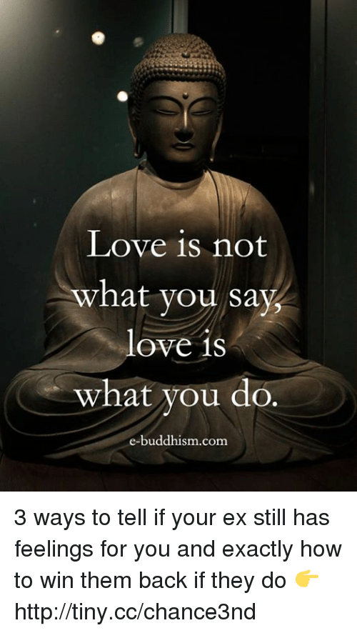 Love, Memes, and How To: Love is not  what you say,  love is  what you do.  e-buddhism com 3 ways to tell if your ex still has feelings for you and exactly how to win them back if they do 👉 http://tiny.cc/chance3nd