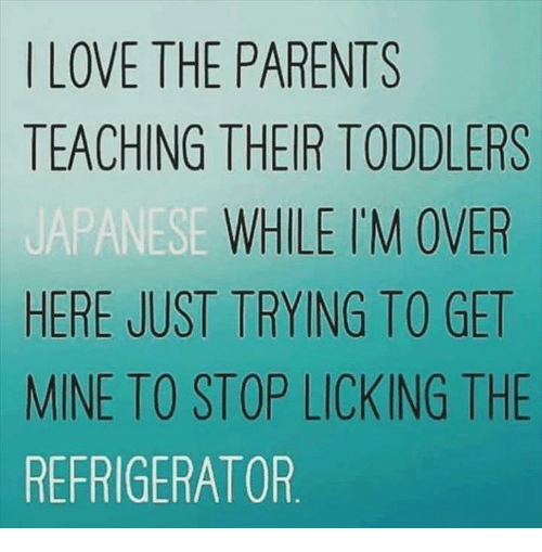 Dank, Love, and Parents: LOVE THE PARENTS  TEACHING THEIR TODDLERS  WHILE I'M OVER  HERE JUST TRYING TO GET  MINE TO STOP LICKING THE  REFRIGERATOR