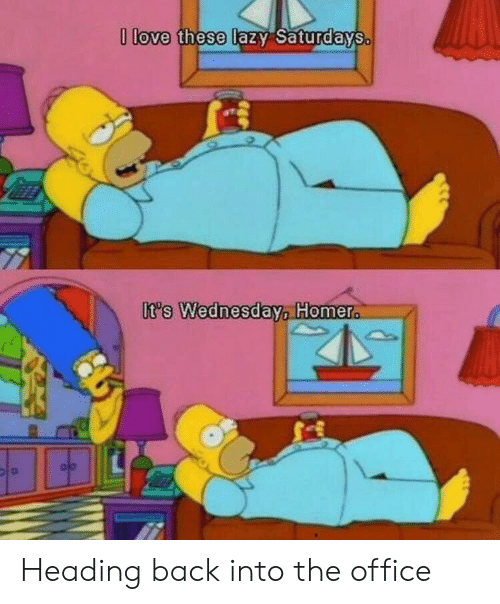 Its Wednesday: love these tazy SaturdaYS  It's Wednesday Homer Heading back into the office
