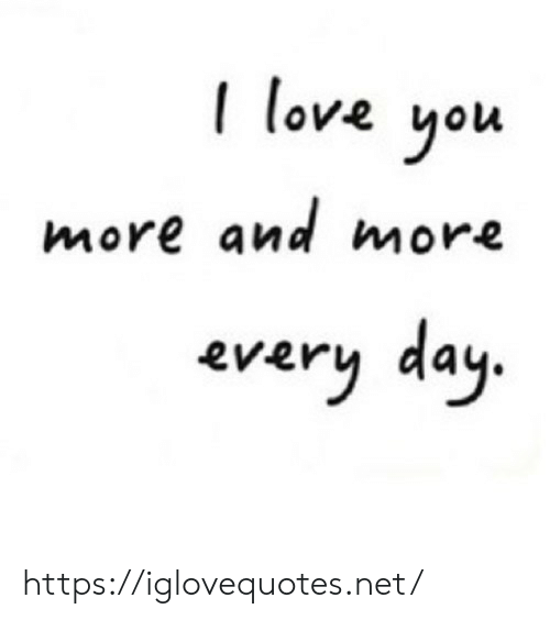 Love, Net, and Day: love you  more and more  every day. https://iglovequotes.net/