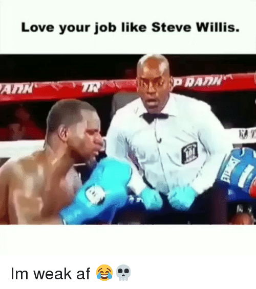 Af, Funny, and Love: Love your job like Steve Willis.  AnN Im weak af 😂💀