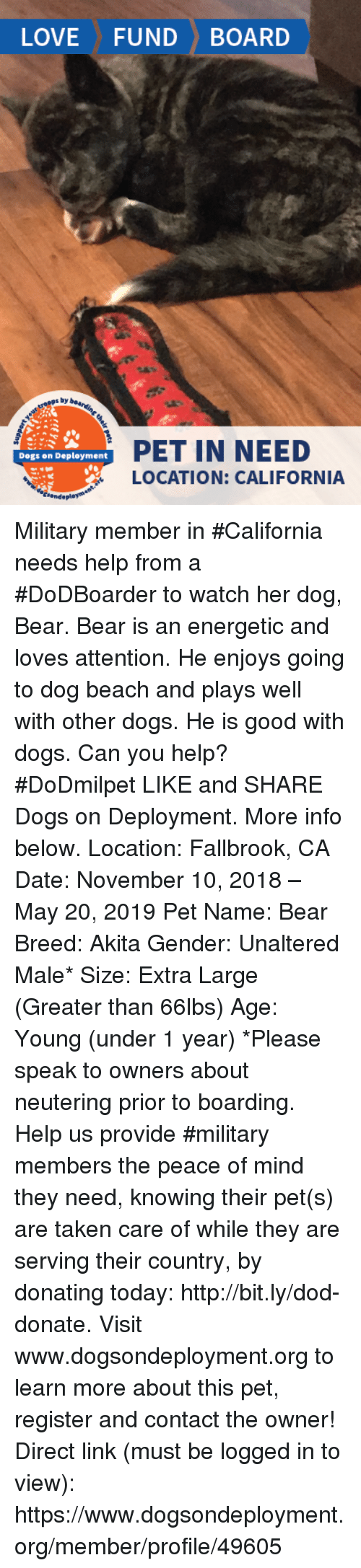 Dogs, Memes, and Taken: LOVEFUNDBOARD  s by  PET IN NEED  LOCATION: CALIFORNIA  Dogs on Deployment Military member in #California needs help from a #DoDBoarder to watch her dog, Bear. Bear is an energetic and loves attention. He enjoys going to dog beach and plays well with other dogs. He is good with dogs. Can you help? #DoDmilpet   LIKE and SHARE Dogs on Deployment. More info below.   Location: Fallbrook, CA Date: November 10, 2018 – May 20, 2019 Pet Name: Bear Breed: Akita Gender: Unaltered Male* Size: Extra Large (Greater than 66lbs) Age: Young (under 1 year)  *Please speak to owners about neutering prior to boarding.  Help us provide #military members the peace of mind they need, knowing their pet(s) are taken care of while they are serving their country, by donating today: http://bit.ly/dod-donate.   Visit www.dogsondeployment.org to learn more about this pet, register and contact the owner!  Direct link (must be logged in to view):  https://www.dogsondeployment.org/member/profile/49605