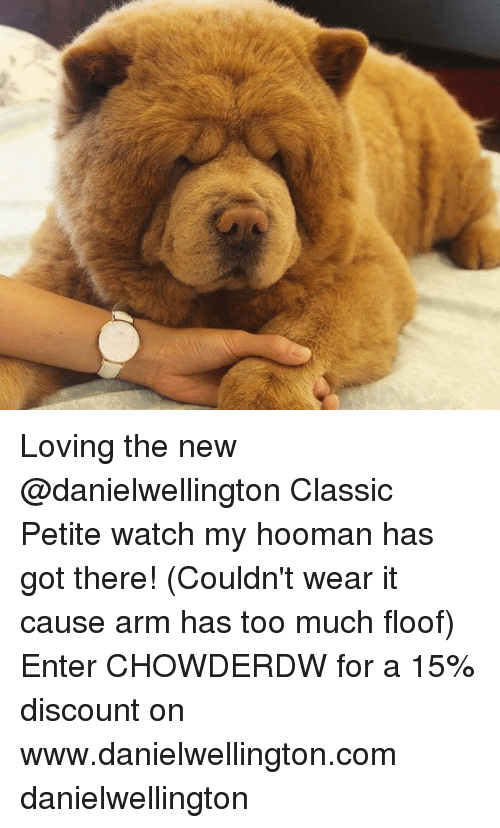 Hoomans: Loving the new @danielwellington Classic Petite watch my hooman has got there! (Couldn't wear it cause arm has too much floof) Enter CHOWDERDW for a 15% discount on www.danielwellington.com danielwellington