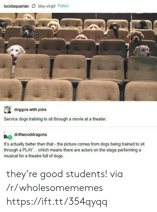 Theatre: lucidaquarian bby-virgo Follow  doggos-with-jobs  Service dogs training to sit through a movie at a theater.  driftwooddragons  It's actually better than that - the picture comes from dogs being trained to sit  through a PLAY... which means there are actors on the stage performing a  musical for a theatre full of dogs. they're good students! via /r/wholesomememes https://ift.tt/354qyqq