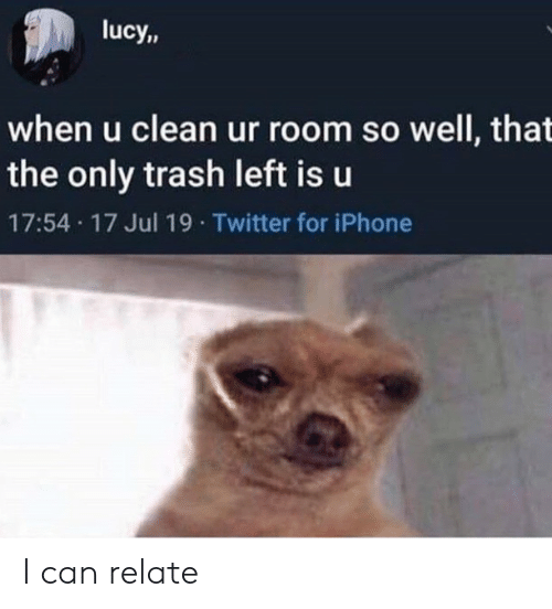 Iphone, Trash, and Twitter: lucy,,  when u clean ur room so well, that  the only trash left is u  17:54 17 Jul 19 Twitter for iPhone I can relate