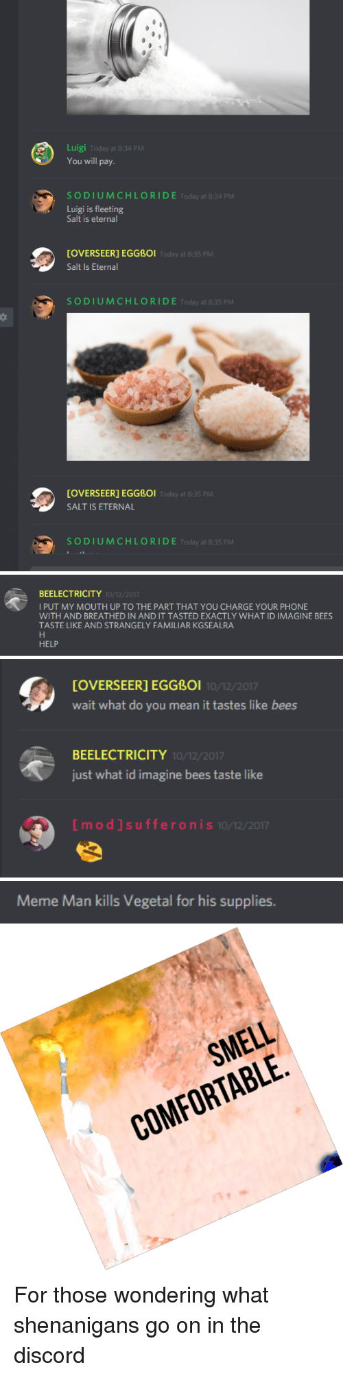 Vegetal: Luigi Today at 8:34 PM  You will pay.  SODIUMCHLORIDE Today at 8:34 PM  Luigi is fleeting  Salt is eternal  [OVERSEER] EGGBOi  Salt Is Eternal  Today at 8:35 P  SODIUMCHLORIDE Today at 8:35 PM  [OVERSEER] EGGBOI  SALT IS ETERNAL  Today at 8:35 PM  SODIUMCHLORIDE Today at 8:35 PM   BEELECTRICITY  I PUT MY MOUTH UP TO THE PART THAT YOU CHARGE YOUR PHONE  WITH AND BREATHED IN AND IT TASTED EXACTLY WHAT ID IMAGINE BEES  TASTE LIKE AND STRANGELY FAMILIAR KGSEALRA  10/12/2017  HELP   [OVERSEER] EGGBoI  wait what do you mean it tastes like bees  10/12/2017  BEELECTRICITY  just what id imagine bees taste like  10/12/2017  [mod]sufferon  I S 10/12/2017   Meme Man kills Vegetal for his supplies.   SMELL  COMFORTABLE <p>For those wondering what shenanigans go on in the discord</p>