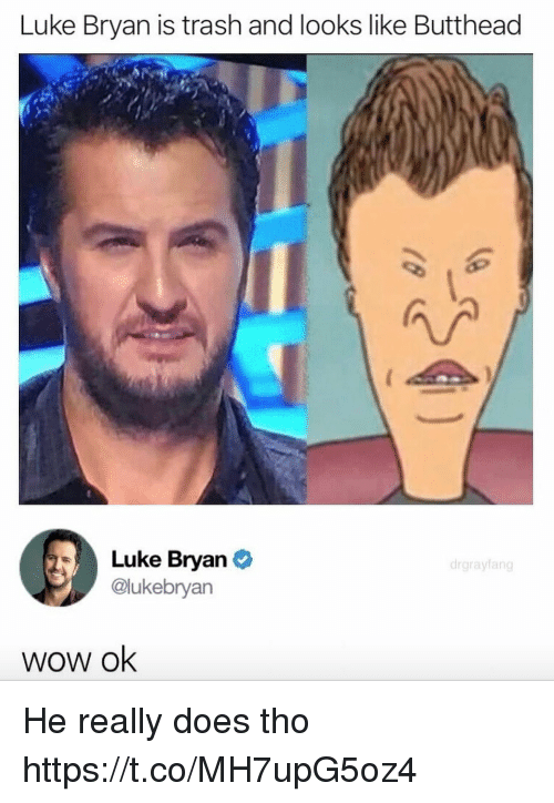 Funny, Trash, and Wow: Luke Bryan is trash and looks like Butthead  Luke Bryan  @lukebryan  drgrayfang  wow ok He really does tho https://t.co/MH7upG5oz4