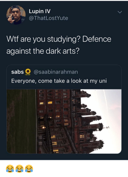 Memes, Wtf, and Arts: Lupin IV  @ThatLostYute  Wtf are you studying? Defence  against the dark arts?  sabs @saabinarahman  Everyone, come take a look at my uni 😂😂😂