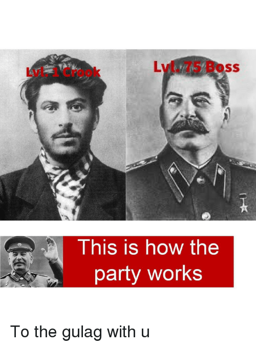gulag: Lvl. 75 Boss  Lvl. 1 Crook  This is how the  party works To the gulag with u
