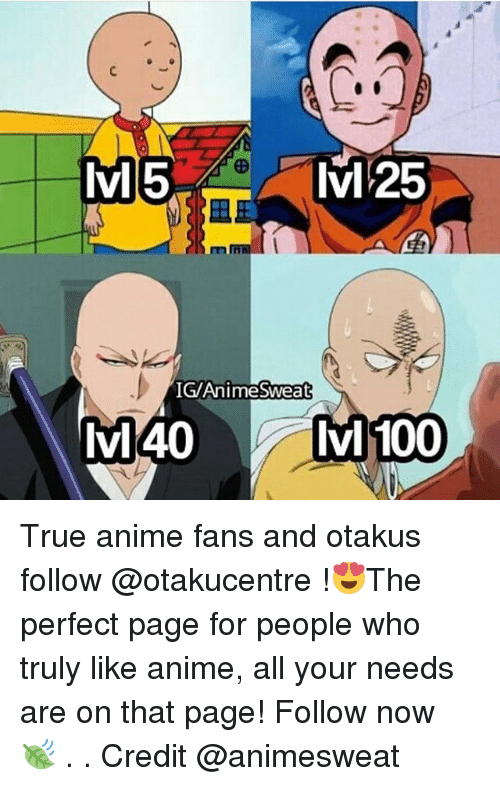 Anaconda, Anime, and Memes: lvM5  IGAnimeSweat  lvl40  Ivl 100 True anime fans and otakus follow @otakucentre !😍The perfect page for people who truly like anime, all your needs are on that page! Follow now 🍃 . . Credit @animesweat