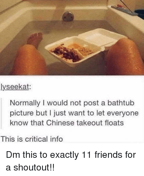Friends, Memes, and Chinese: lyseekat:  Normally I would not post a bathtub  picture but I just want to let everyone  know that Chinese takeout floats  This is critical info Dm this to exactly 11 friends for a shoutout!!