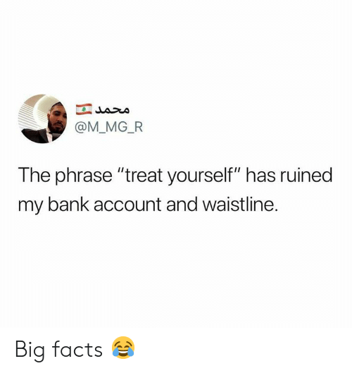 """Facts, Memes, and Bank: @M_MG_FR  The phrase """"treat yourself"""" has ruined  my bank account and waistline. Big facts 😂"""