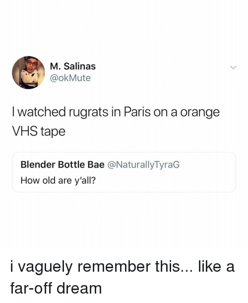 Bae, Rugrats, and Blender: M. Salinas  @okMute  I watched rugrats in Paris on a orange  VHS tape  Blender Bottle Bae @NaturallyTyraG  How old are y'all? i vaguely remember this... like a far-off dream