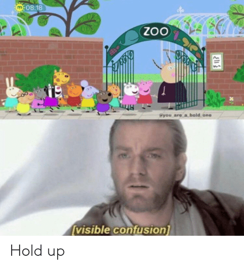 Bold, Zoo, and One: M08:18  ZoO  @you are a bold one  visible confusion] Hold up