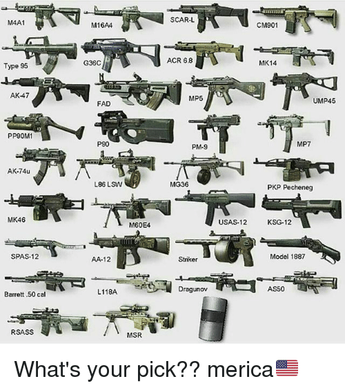 Memes, Ak-47, and 🤖: M4A1  Type 95  AK-47  PP90M1  AK-74u  MK46  SPAS-12  Barrett .50 cal  RSASS  M16AA  G36C  FAD  P90  L86 LSW  M60E4  AA-12  L118A  MSR  SCAR-L  ACR 68  MP5  PM-9  MG36  Striker  Dragunov  USAS-12  CM901  MK14  UMP45  MP7  PKP Peche neg  KSG-12  Model 1887  AS50 What's your pick?? merica🇺🇸