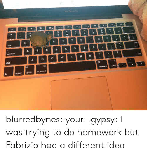 Commandeer: MacBook Pro  esc  tab  caps loc  shift  shift  alt  command option  fn  controloption  command blurredbynes:  your—gypsy:  I was trying to do homework but Fabrizio had a different idea