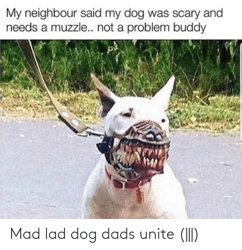 dads: Mad lad dog dads unite (|||)