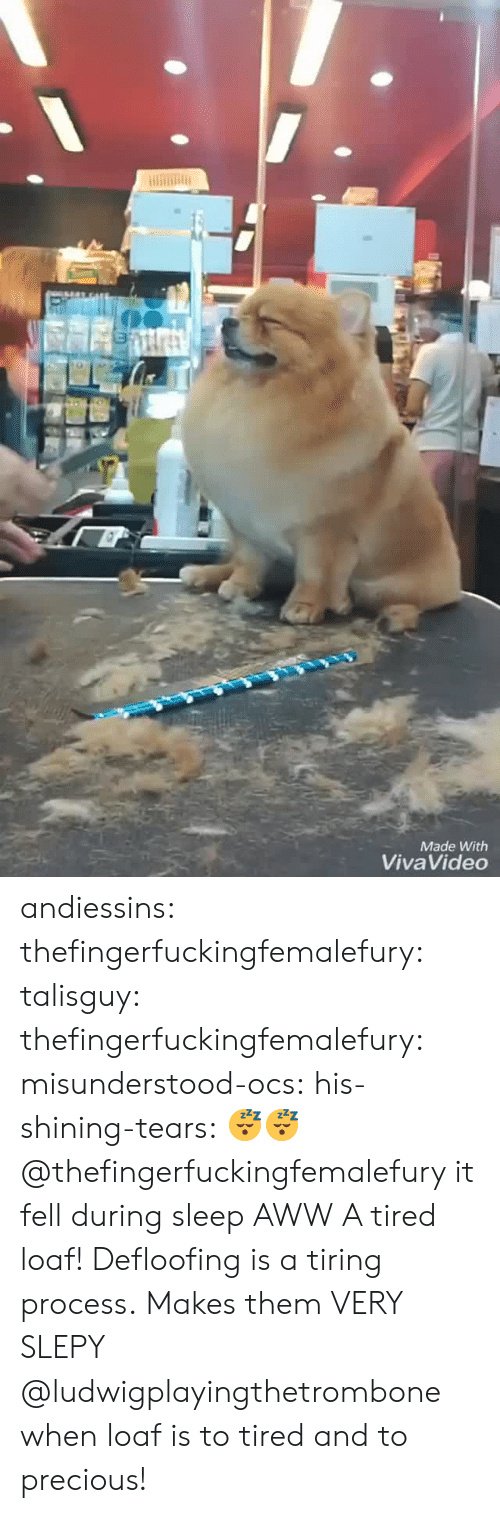 Aww, Precious, and Tumblr: Made With  Viva Video andiessins:  thefingerfuckingfemalefury:  talisguy:  thefingerfuckingfemalefury:   misunderstood-ocs:  his-shining-tears: 😴😴 @thefingerfuckingfemalefury it fell during sleep AWW  A tired loaf!   Defloofing is a tiring process.  Makes them VERY SLEPY   @ludwigplayingthetrombone when loaf is to tired and to precious!