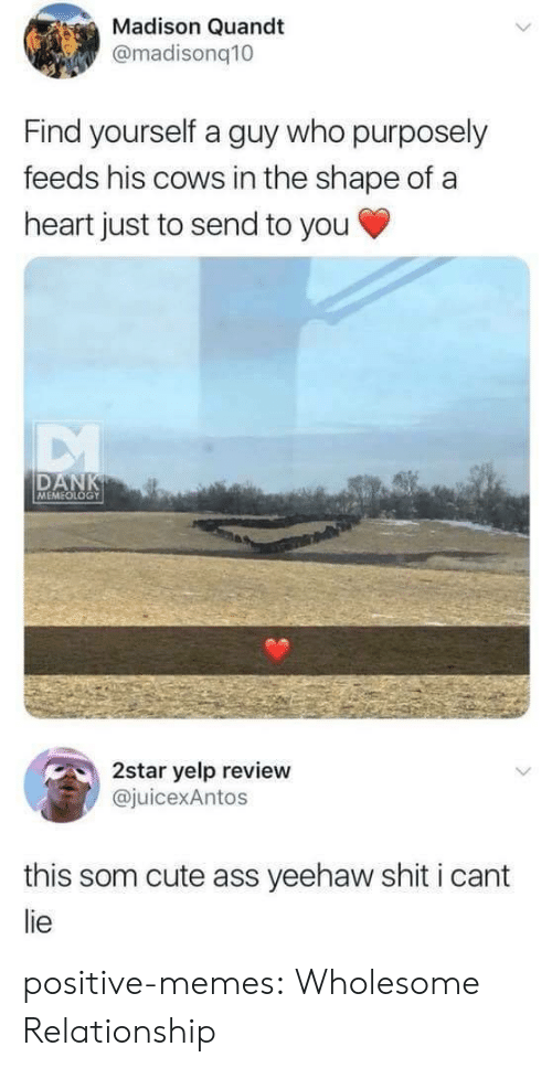 I Cant Lie: Madison Quandt  @madisonq10  Find yourself a guy who purposely  feeds his cows in the shape of a  heart just to send to you  DAN  MEMEOLOGY  2star yelp review  juicexAntos  this som cute ass yeehaw shit i cant  lie positive-memes: Wholesome Relationship