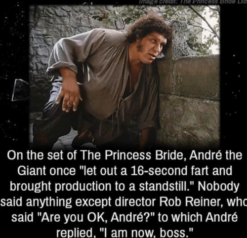 """André the Giant, Dank, and Giant: mage creah The Eincess Bide Etd  On the set of The Princess Bride, André the  Giant once """"let out a 16-second fart and  brought production to a standstill."""" Nobody  said anything except director Rob Reiner, who  said """"Are you OK, André?"""" to which André  replied, """"I am now, boss."""""""