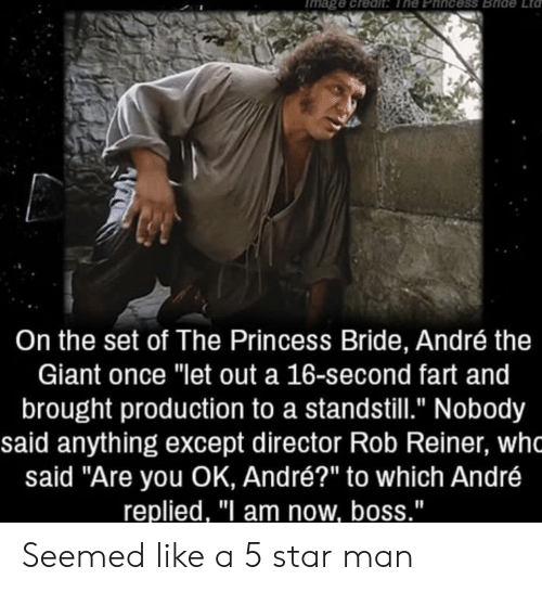 """André the Giant, Giant, and Princess: mage credit The Phincess Bride  Lta  On the set of The Princess Bride, André the  Giant once """"let out a 16-second fart and  brought production to a standstill."""" Nobody  said anything except director Rob Reiner, wh  said """"Are you OK, André?"""" to which André  replied, """"I am now, boss."""" Seemed like a 5 star man"""