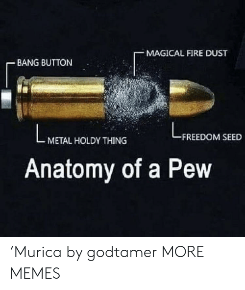 Dank, Fire, and Memes: MAGICAL FIRE DUST  BANG BUTTON  FREEDOM SEED  METAL HOLDY THING  Anatomy of a Pew 'Murica by godtamer MORE MEMES