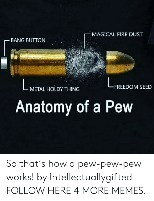 Dank, Fire, and Memes: MAGICAL FIRE DUST  BANG BUTTON  FREEDOM SEED  METAL HOLDY THING  Anatomy of a Pew So that's how a pew-pew-pew works! by Intellectuallygifted FOLLOW HERE 4 MORE MEMES.