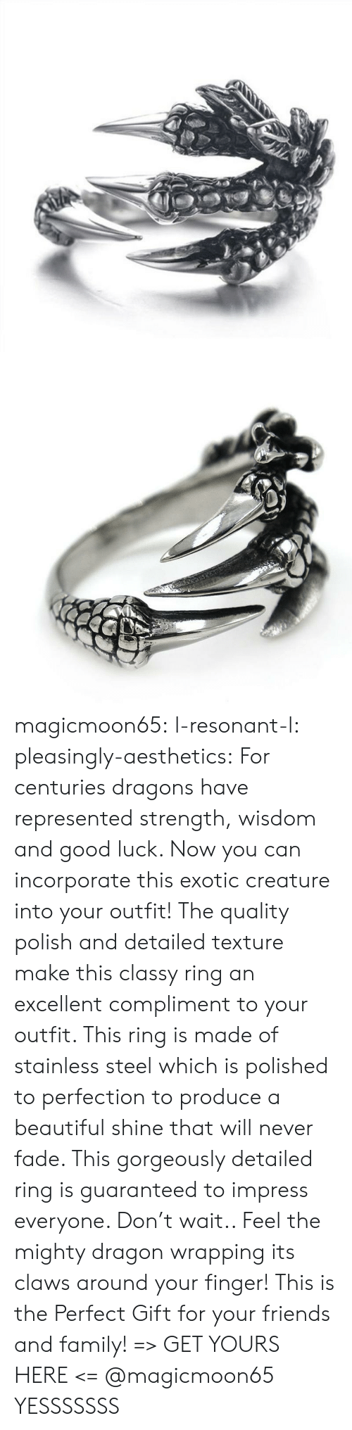 Beautiful, Family, and Friends: magicmoon65:  l-resonant-l:  pleasingly-aesthetics: For centuries dragons have represented strength, wisdom and good luck. Now you can incorporate this exotic creature into your outfit! The quality polish and detailed texture make this classy ring an excellent compliment to your outfit. This ring is made of stainless steel which is polished to perfection to produce a beautiful shine that will never fade.  This gorgeously detailed ring is guaranteed to impress everyone. Don't wait.. Feel the mighty dragon wrapping its claws around your finger! This is the Perfect Gift for your friends and family! => GET YOURS HERE <=   @magicmoon65   YESSSSSSS