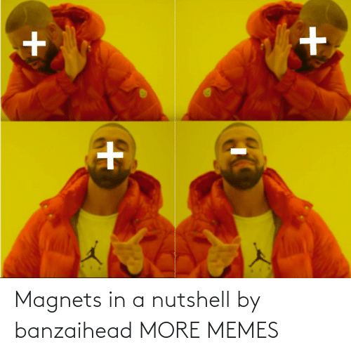 Nutshell: Magnets in a nutshell by banzaihead MORE MEMES