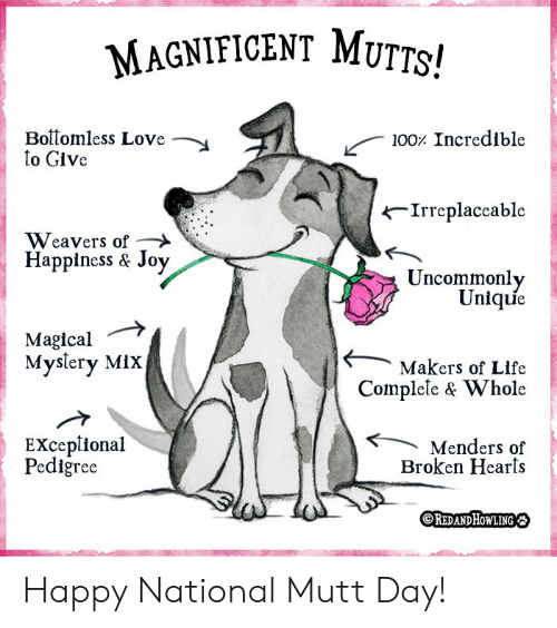 Magnificent: MAGNIFICENT MUTTS!  Boitomless Love  to Give  100 Incredible  Irreplaceable  Weavers of  Happiness & Joy  Uncommonly  Unique  Magical  Myslery MiX  Makers of Life  Complele & Whole  EXceplional  Pediğree  Menders of  Broken Hearts  OREDANDHOWLING Happy National Mutt Day!