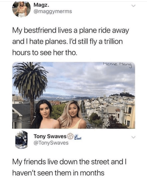 Friends, Meme, and Live: Magz.  @maggymerms  My bestfriend lives a plane ride away  and I hate planes. I'd still fly a trillion  ours to see her tho  Meme Man  Tony Swaves  @TonySwaves  My friends live down the street and l  haven't seen them in months