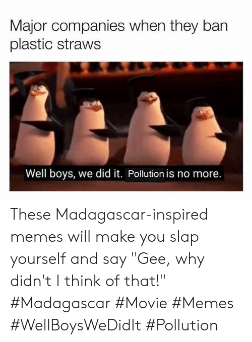 "Memes, Movie, and Boys: Major companies when they ban  plastic straws  Well boys, we did it. Pollution is no more. These Madagascar-inspired memes will make you slap yourself and say ""Gee, why didn't I think of that!"" #Madagascar #Movie #Memes #WellBoysWeDidIt #Pollution"