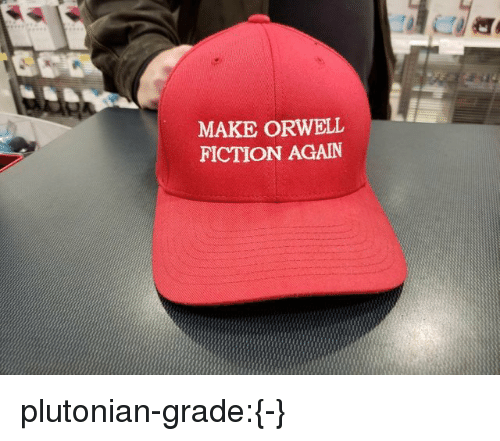 Tumblr, Blog, and Imgur: MAKE ORWELL  FICTION AGAIN plutonian-grade:{-}
